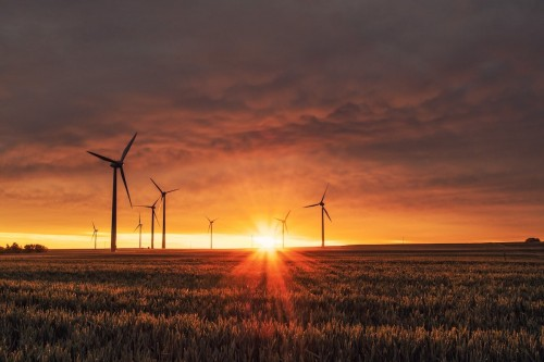 How to Get Started in ESG Investing